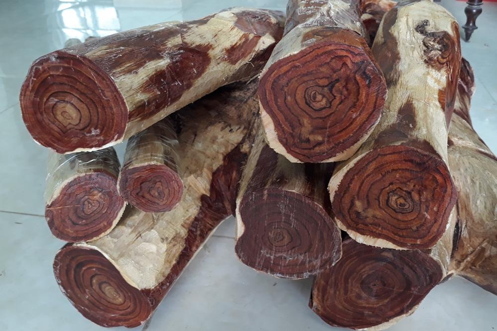 Loại gỗ màu đen quý hiếm trong tự nhiên hiện nay