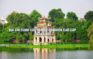 Địa chỉ cung cấp sàn gỗ tự nhiên cao cấp tại Hà Nội