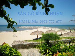 Sàn gỗ Bình Thuận - Hotline: 0979 777 677
